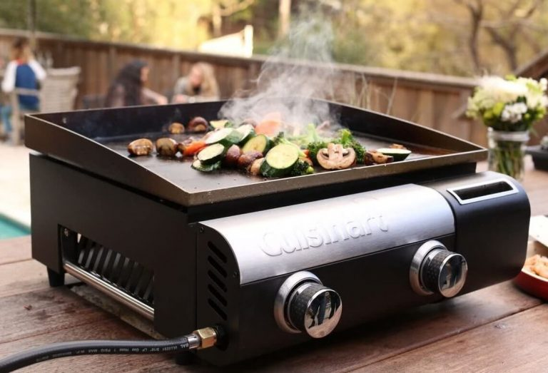 How to Choose the Best Portable Grill for RV